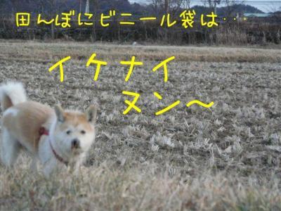 suNxNXax.jpg