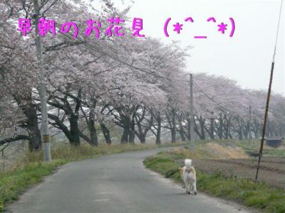 xyO8oTcD.jpg