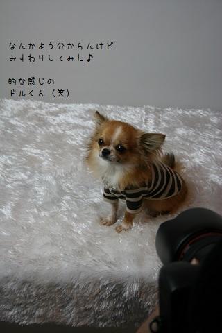 IMG_6342-001.jpg