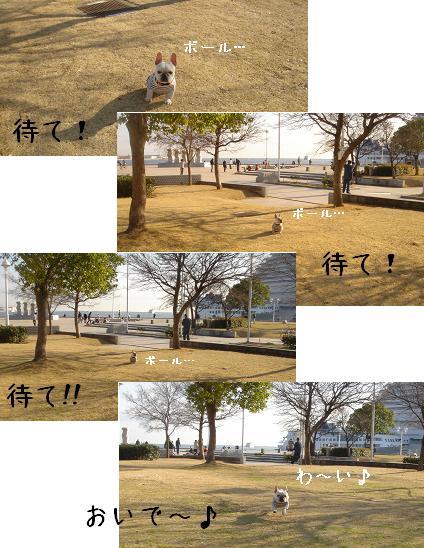 ボールで遊びたいでちゅ・・・