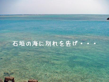 いしがき11
