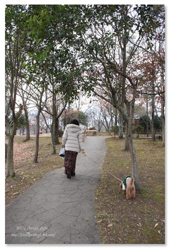 手賀沼公園