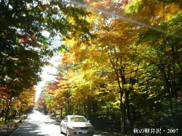 shiozawa29.jpg