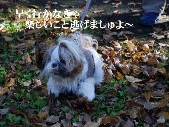 shiozawa54.jpg