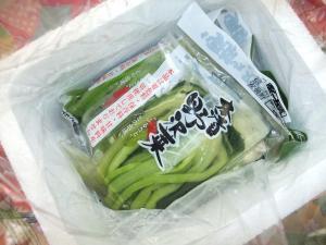 11 11 25nozawana (2)