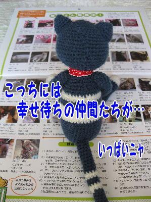 image01143.jpg