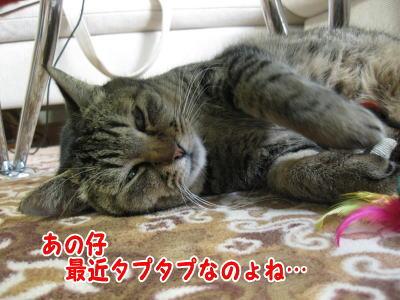 image05021.jpg