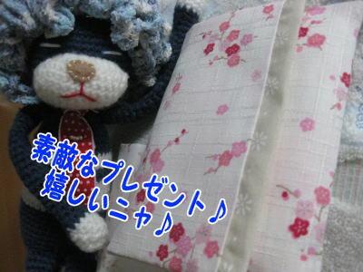 image05282_20090528085743.jpg