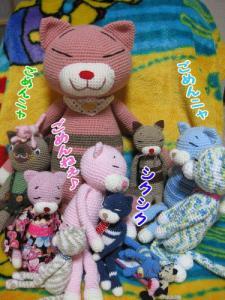 image11095.jpg