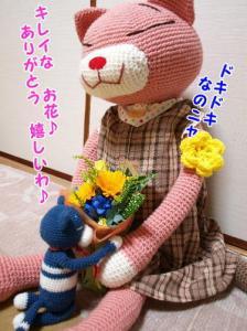 image11122.jpg