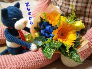 image11123.jpg
