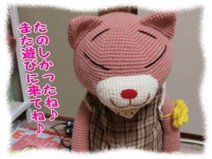 image11175.jpg