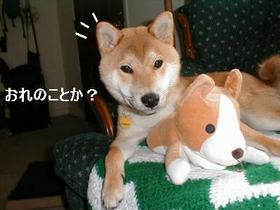 orenokoto.jpg
