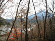 西湖と根場