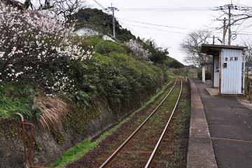 春近し(6)