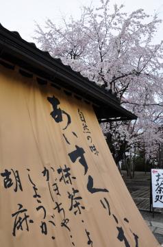 醍醐寺(16)