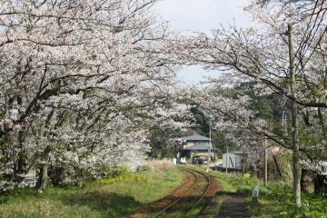浦ノ崎駅(9)