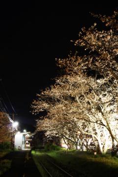 浦ノ崎駅(13)