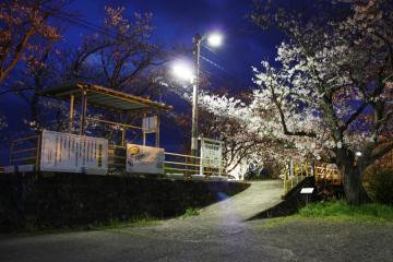 浦ノ崎駅(15)