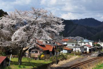 石見簗瀬駅(16)