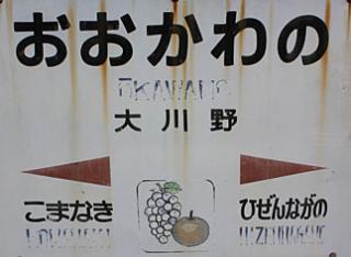 大川野駅(1)