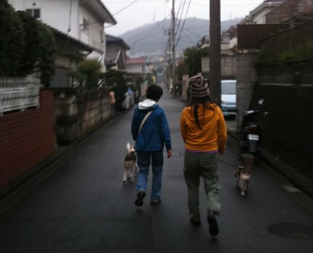 20111202_kamakura_from_boise6.jpg