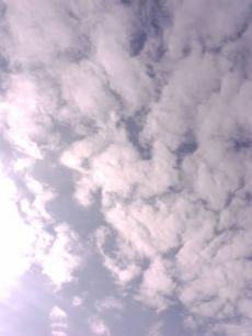sky2009_convert_20090105132830.jpg