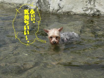 ムぅ~ン風呂