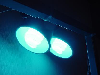 スパイラル蛍光灯