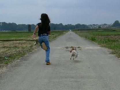 田園で走る