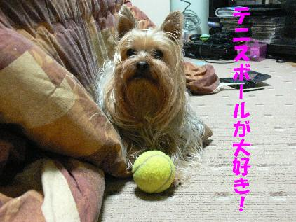 ムぅ~ン ボール