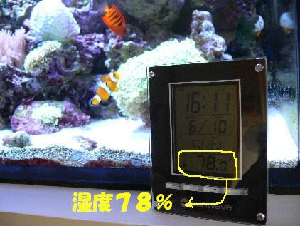湿度78%