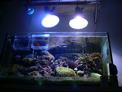 150W×2灯