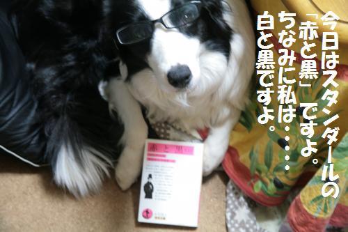 akatokuro_convert_20081205031026.jpg