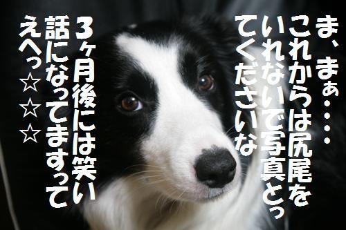 fer+cccc_convert_20081209202200.jpg