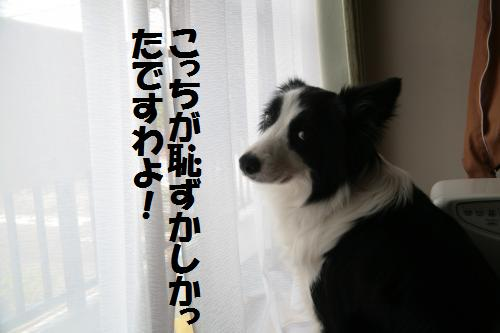 hazukasi2_convert_20090619234357.jpg