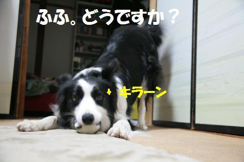hissatu3_convert_20090618233701.jpg