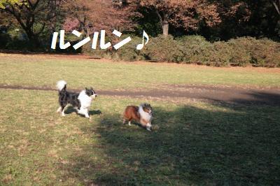 nakayosi2_convert_20081126103547.jpg