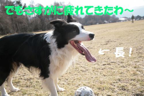 noujo2_convert_20090411230727.jpg