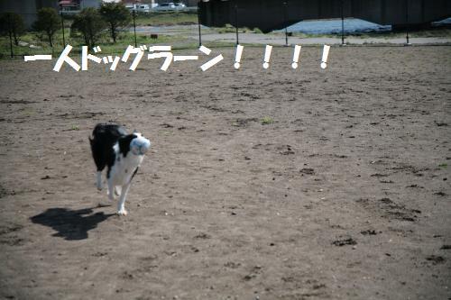 suwa1_convert_20090415214908.jpg