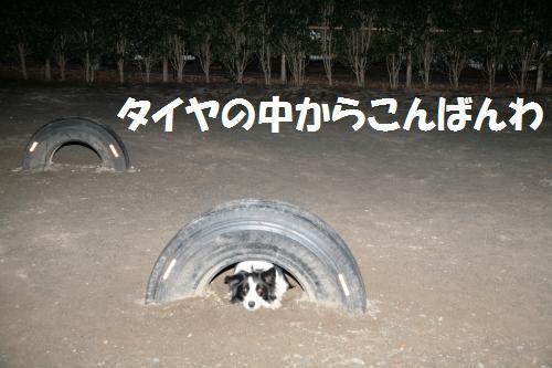 taiyas_convert_20090111193539.jpg