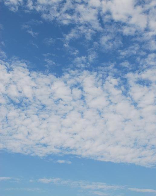 2008-10-11_14-36-57_1.jpg