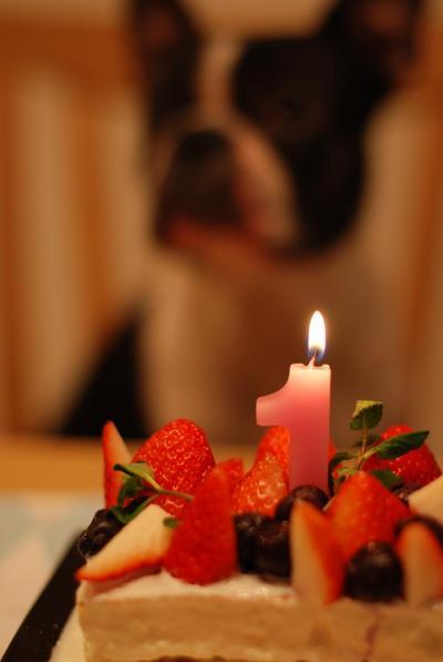 2009-01-05_21-30-48.jpg