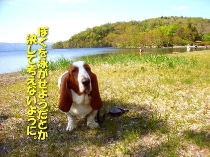 200806_kushiro04.jpg