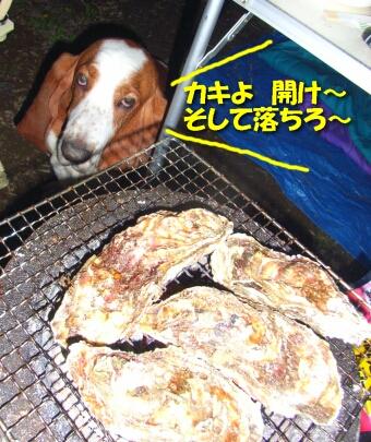 200806_kushiro18.jpg