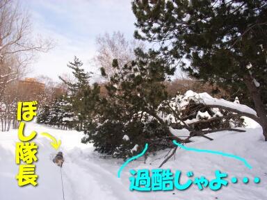 2008_02_snowstorm1.jpg