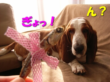 2008_02_valentine2.jpg