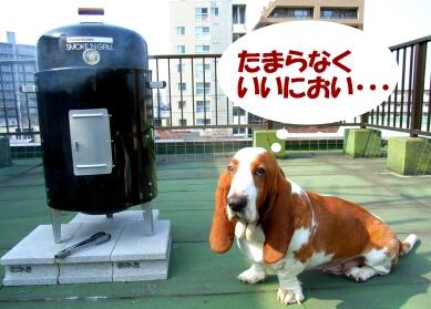 2008_0405_trip02.jpg