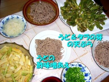 2008_0405_trip06.jpg