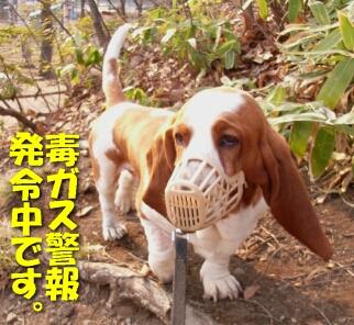 2008_04_afterope2.jpg